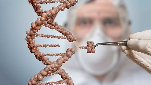 Edição de genes: a realidade que intriga a OMS