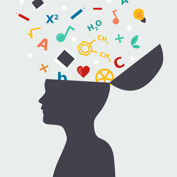 Quer aprender algo novo? Pesquisa de Yale revela quando o cérebro é mais eficiente