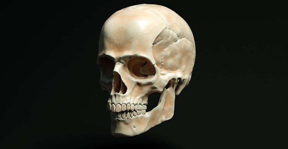 O uso do celular está mudando o formato do crânio humano